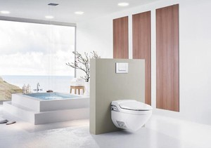 House Geberit Model Balena Shower Toilet
